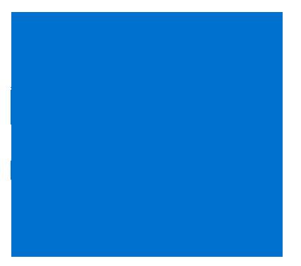 Department Of The Treasury Internal Revenue Service USA